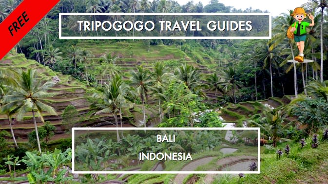 Bali Indonesia Free Pdf Travel Guide Book Tripogogo