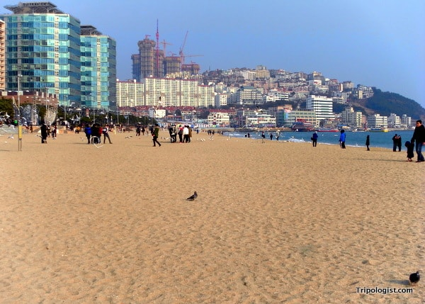Haeundae Beach is one of the top beaches in South Korea, but always crowded in the summer.