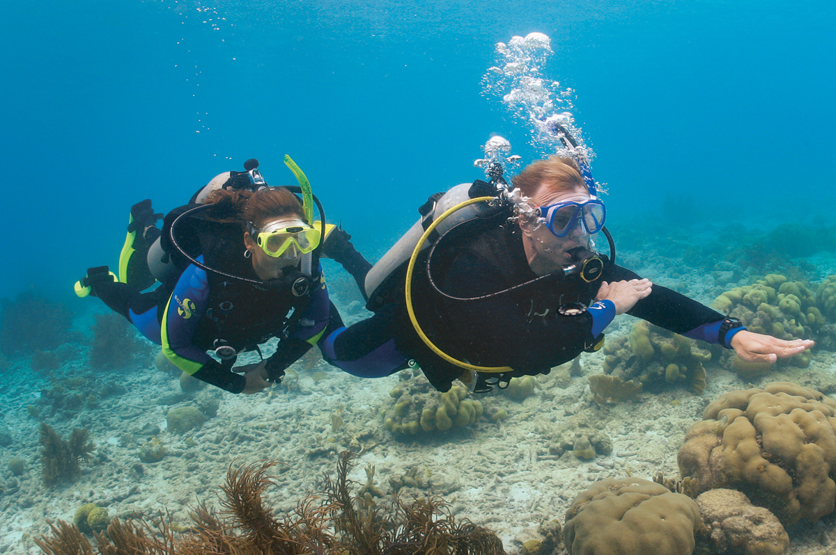 scuba diving in kerela