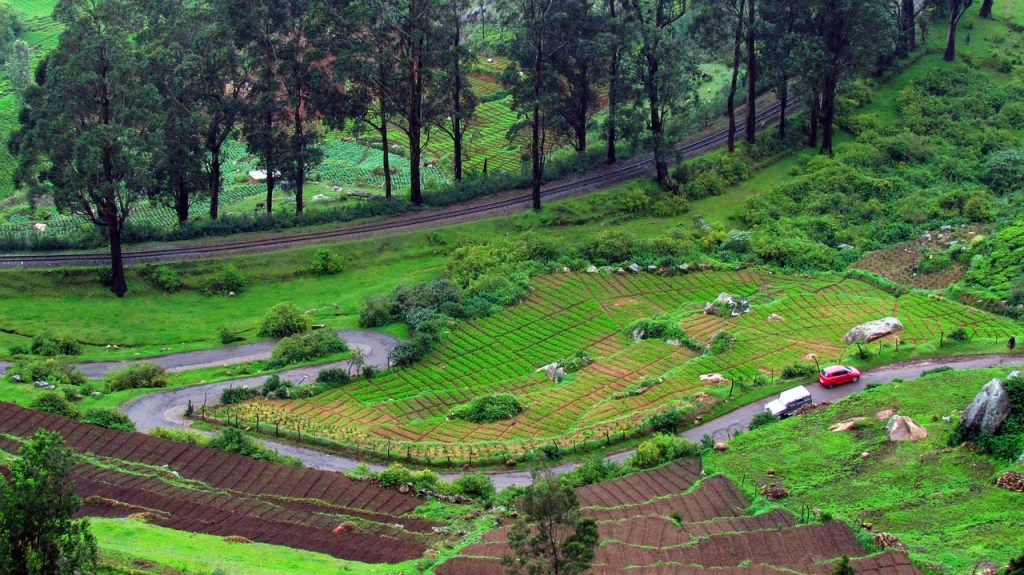 work from ooty