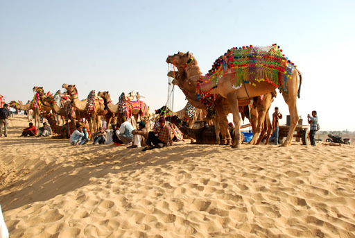 Indian Deserts: Bikaner