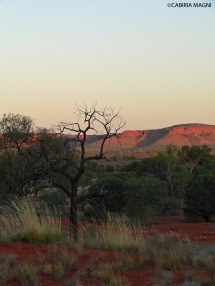 Kings Canyon @ sunset