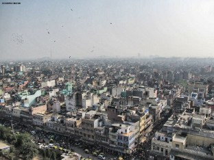 Delhi from the top