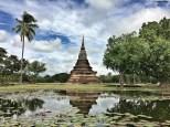 Wat Mahathat ninfee