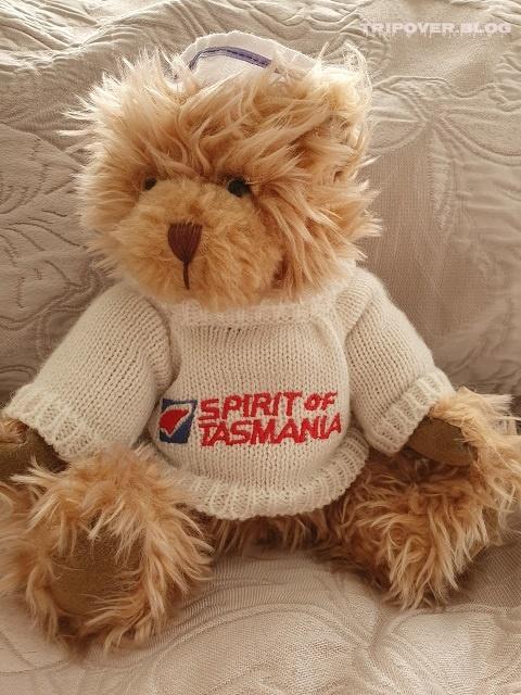 Tasmania - Things to Do and See - Spirit of Tasmania Bear