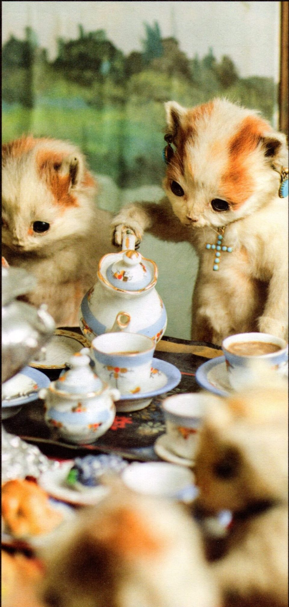 MONA cats tea party
