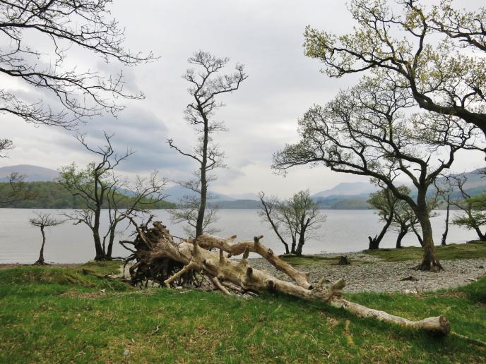 Am Loch Lomond