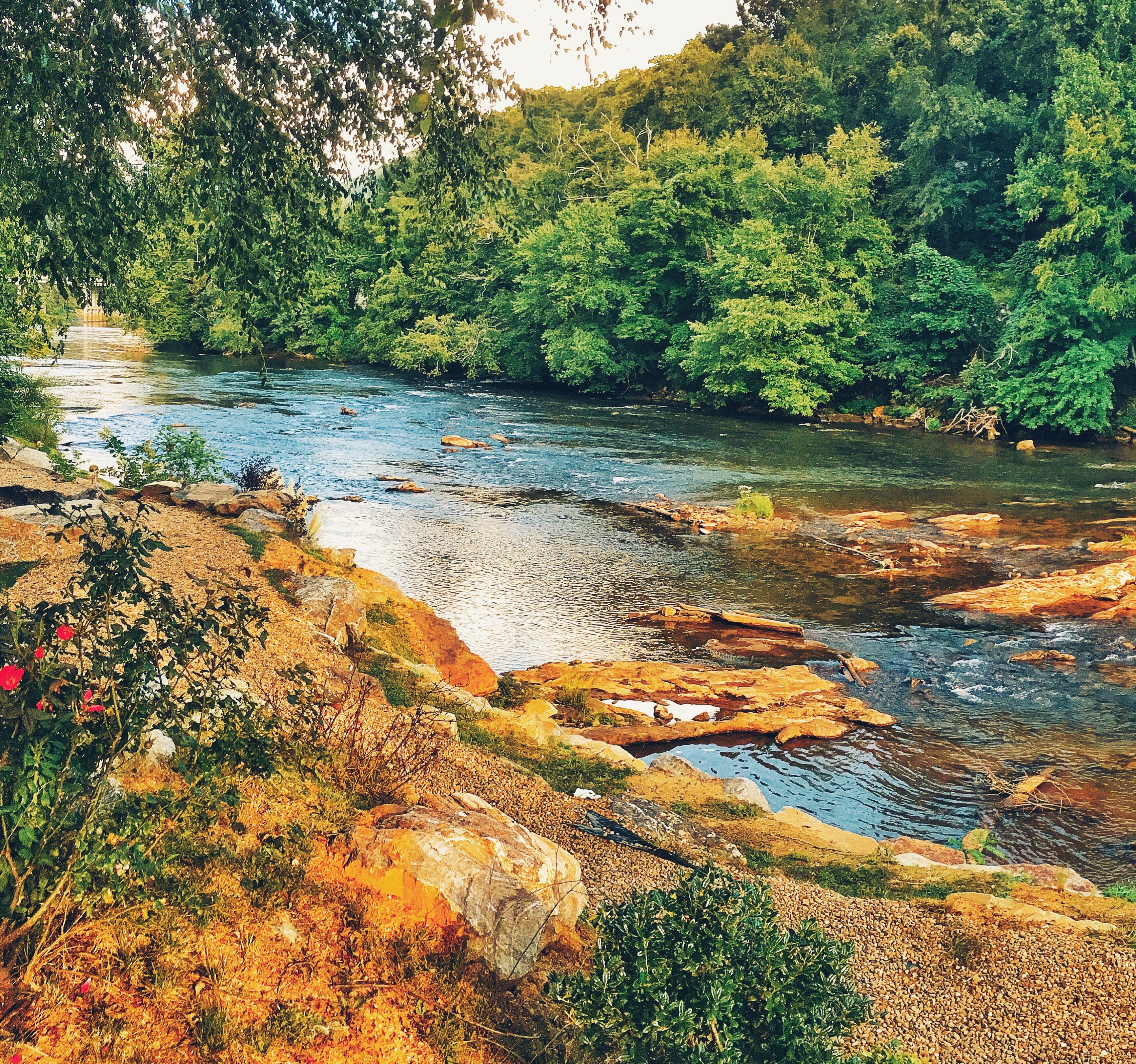 best-western-plus-river