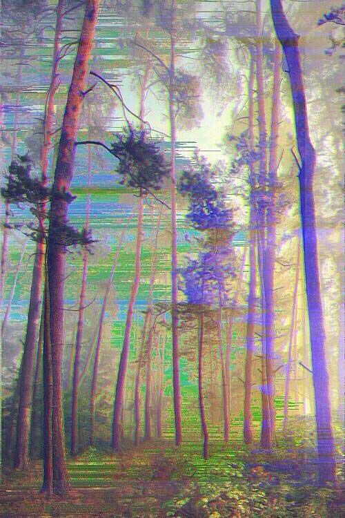 Trippy-Forest
