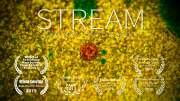STREAM – Explore The Unseen