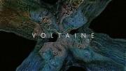 Voltaine Butterflies
