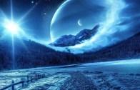 Winter Cosmos