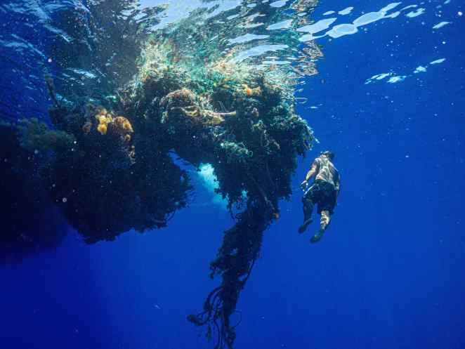 Ocean Plastic From the GPGP