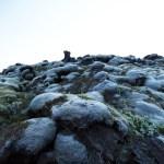 آثار نمو البكتيريا على الصخور البركانية التي تكونت بعد جفافها