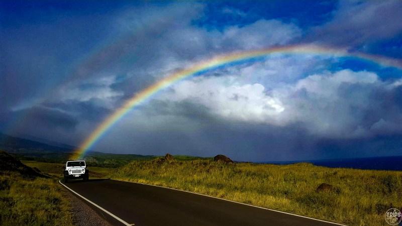 Maui trip