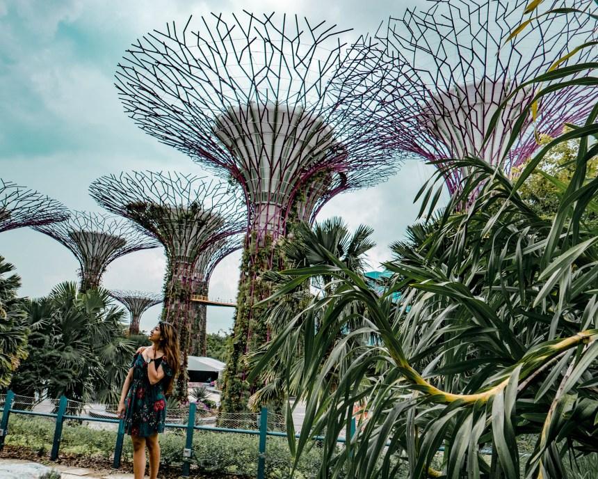 Singapore-1040336.jpg