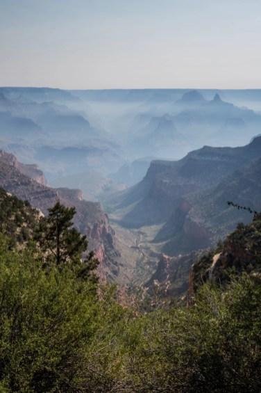 20150619 - Grand Canyon-173