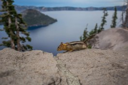 20150707 - Crater Lake NP-25