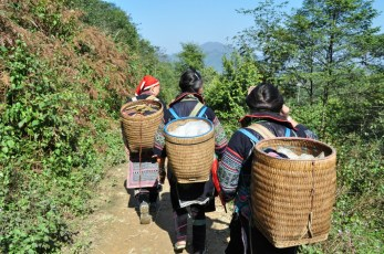 Hiking with the Hmong and Dao
