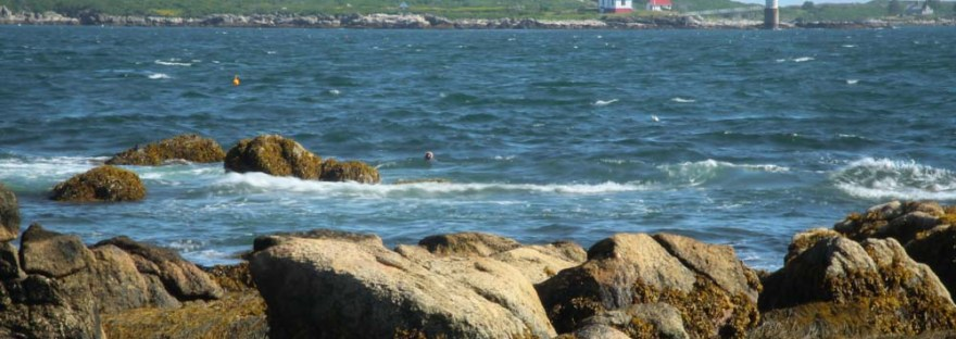 Ocean Point View