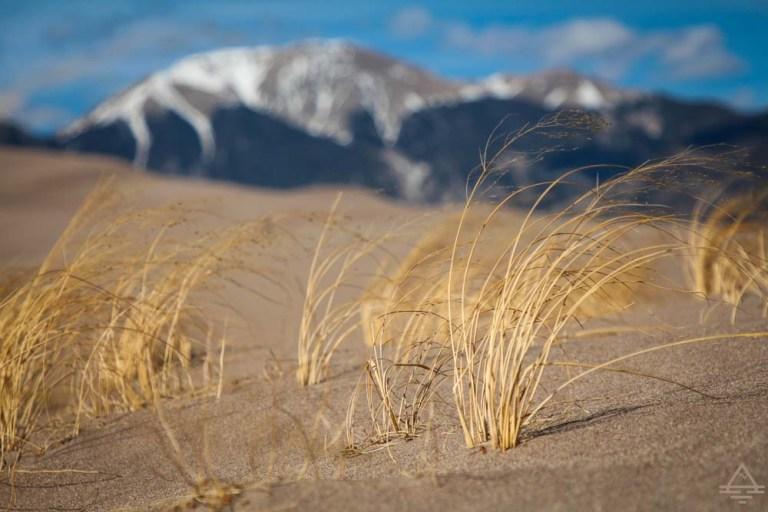 Great Sand Dunes National Park trip