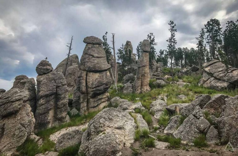 Custer State Park Trips
