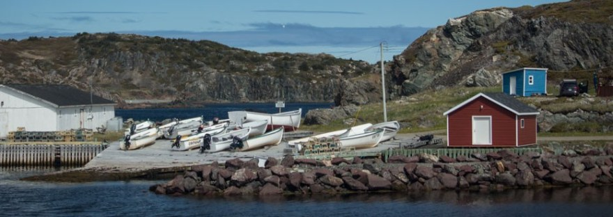 Boats and Buildings by the Coast in Newfoundland