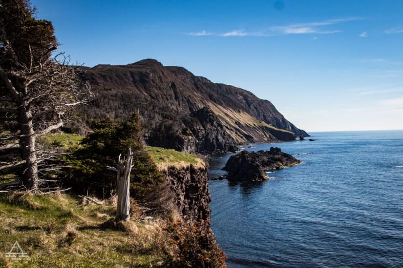Coastal Cliff and Sea
