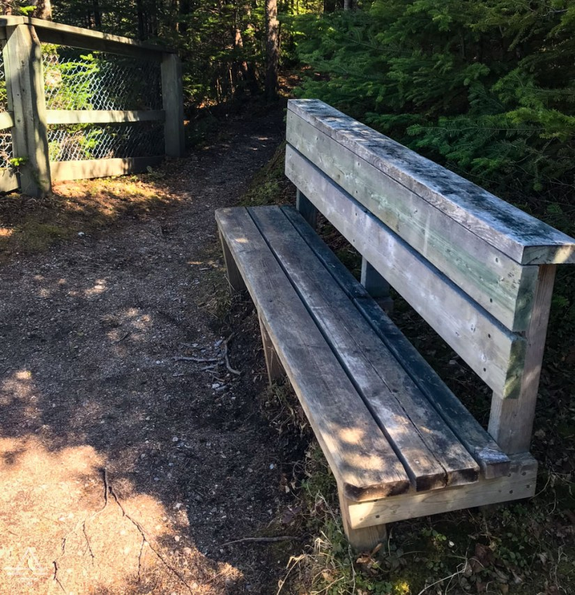 Bench on Berry Hill Trail in Gros Morne National Park