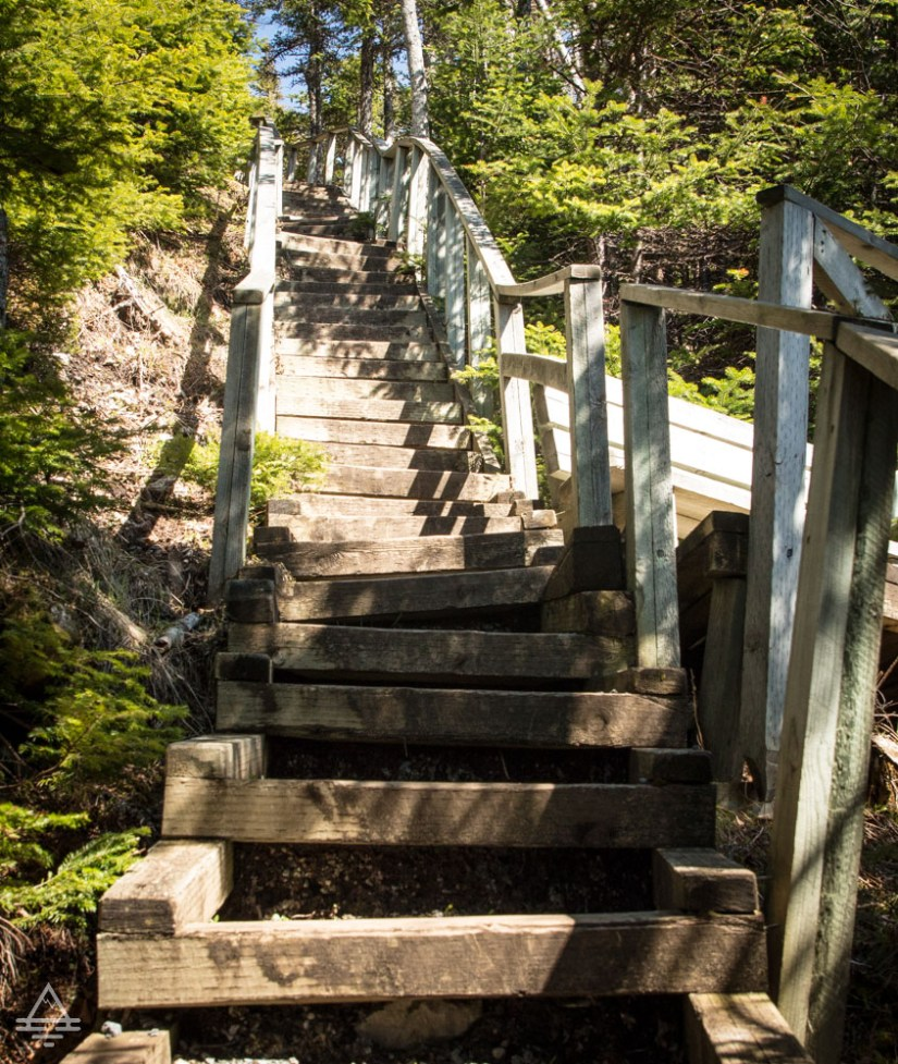 Stairs on Berry Hill Trail in Gros Morne National Park