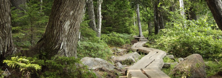 Acadia Hike Jordan Pond Trail Boardwalk