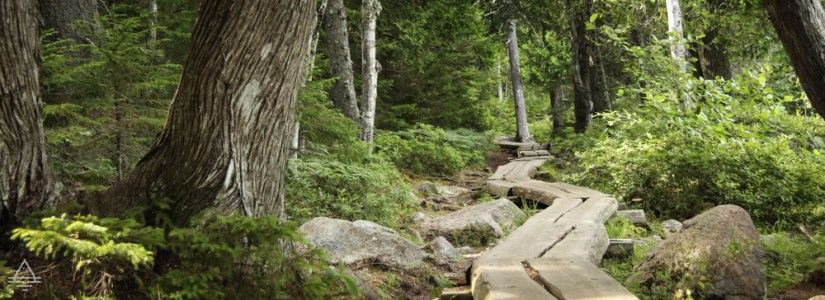 Acadia Hike Jordan Pond Trail Boardwalk