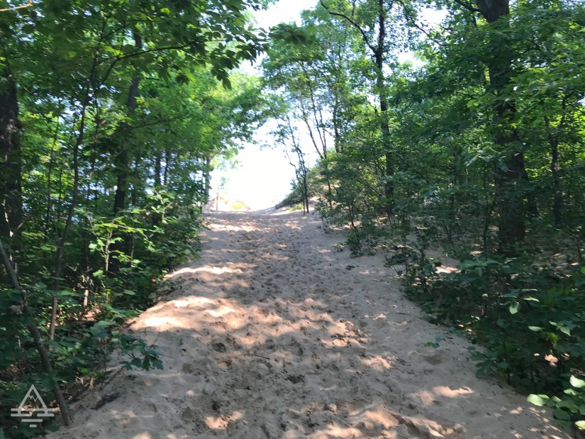Sandy Trail at Mount Baldy at Indiana Dunes National Park