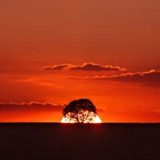 Landscape Photography (9)