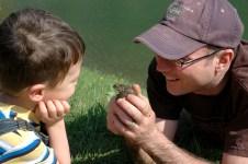showing D a toad, noszvaj