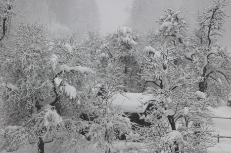 Lots of snow, Bad Goisern, Austria