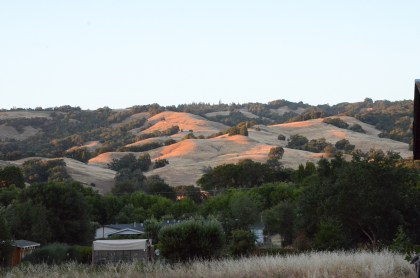 Rolling hills in the Anderson Valley.