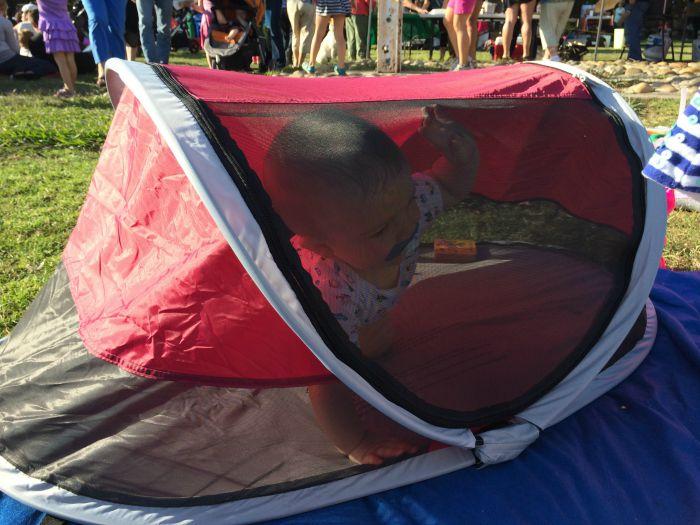 KidCo PeaPod at Outdoor Music Festival & KidCo PeaPod at Outdoor Music Festival - Trips With Tykes