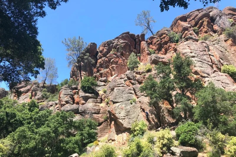 San Francisco Day Trips - Pinnacles National Park