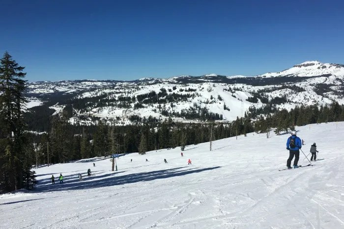 Skiing Sugar Bowl with Kids - Bluebird day on the slopes