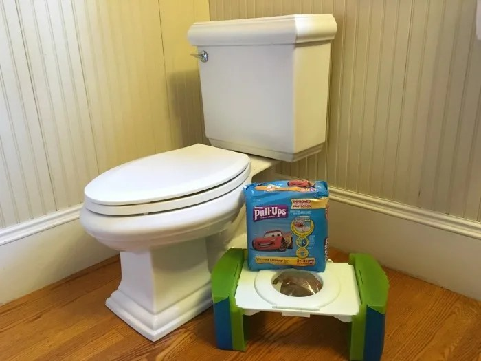 Potty Training During Travel - Pull-Ups and Toilet