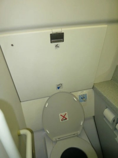 Tips for Potty Training During Travel - Airplane Lavatory