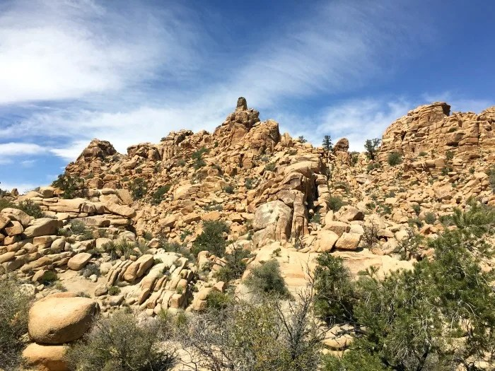 Joshua Tree National Park with Kids - Hidden Valley