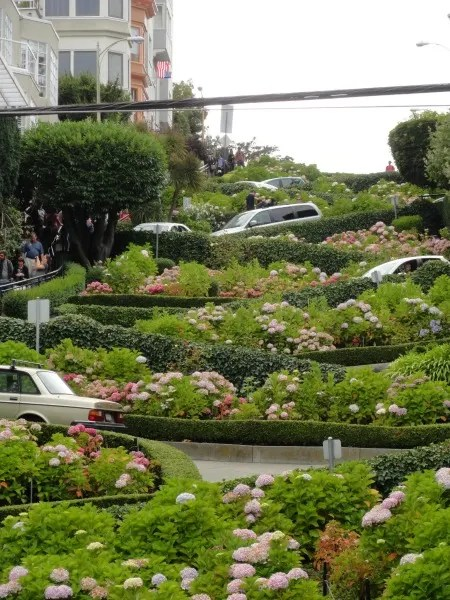 Free Things to Do in San Francisco with Kids - Lombard Street