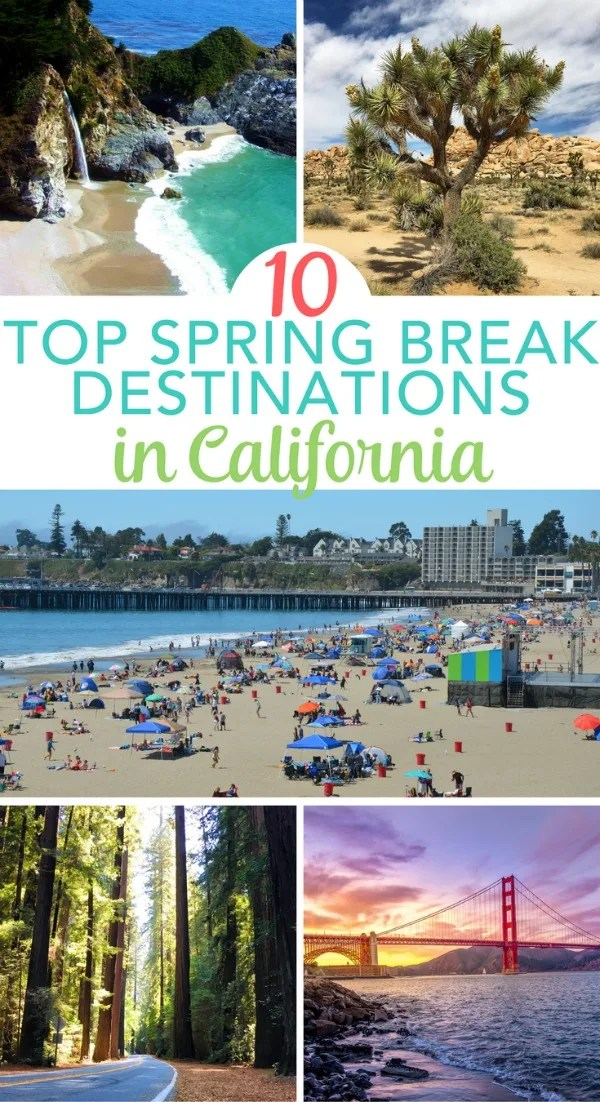 Considering spring break in California? 10 amazing destinations in the Golden State to visit with kids in the spring!