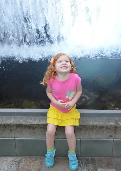 Things to do in Monterey California with Kids - Monterey Bay Aquarium
