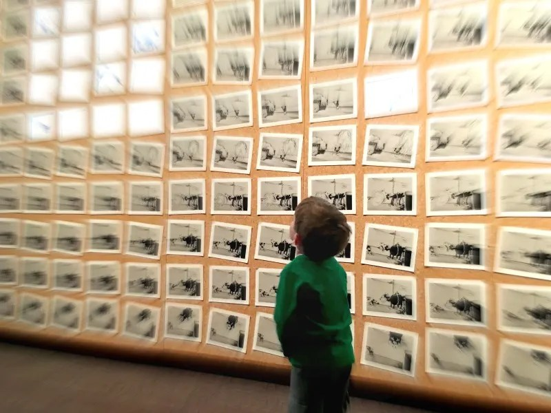 Walt Disney Family Museum - Toddler Animation Wall