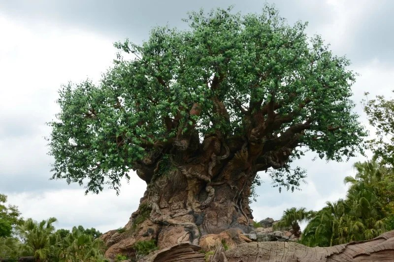 Which Walt Disney World Park to Skip on a Short Trip - Animal Kingdom Tree of Life