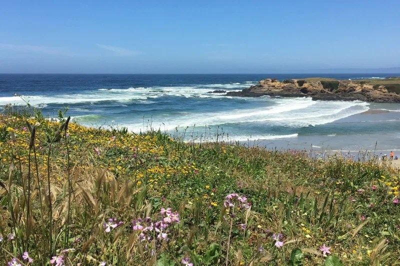 Mendocino County California with Kids - Coastal View