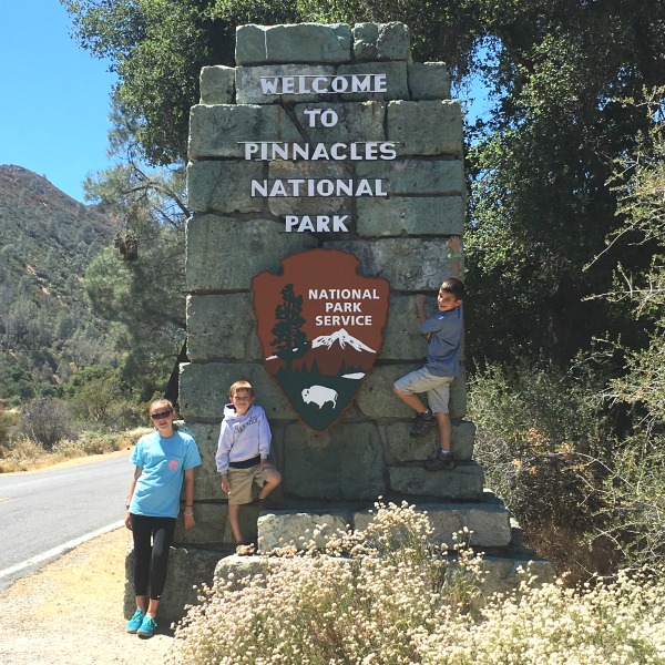 Northern California National Parks - Pinnacles
